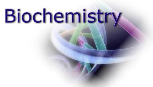 超纯水机在生物化学分析中的应用