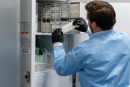 亿倍低温冰箱 应用