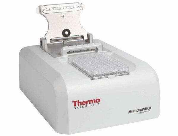 超微量分光光度计NanoDrop8000 高通量 全波长 超微量检测